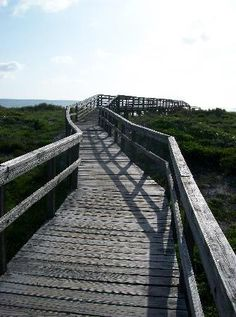 Little Talbot Island State Park - jacksonville fl- so pretty, went here with my aunt Patti and uncle Wayne a few years ago! Thanks for pinning Patti!
