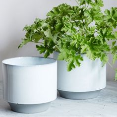 Large White Plant Pots - Set of 2 - View All Home Decoration - Home Decoration - Home Accessories