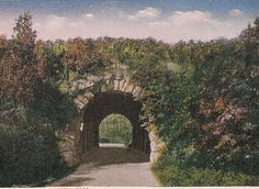 Franklin Park Boston, antique postcard, 1916 postmark