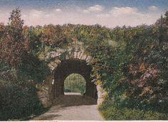 Franklin Park Boston, antique postcard, 1916 postmark