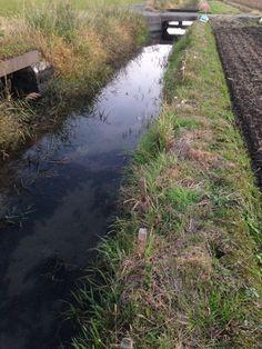 日本 農業用水路