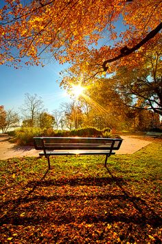 beautiful Autumn Landscape photo via: www.by ---- by PjPhoto Beautiful World, Beautiful Places, Beautiful Pictures, Landscape Photography, Nature Photography, Autumn Scenes, Fall Pictures, Beautiful Landscapes, Autumn Leaves