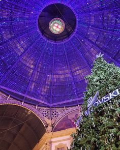 Christmas time in Milan#milan #mycity #galleriavittorioemanuele #christmas #sothisischristmas #christmastime #christmaslights #christmastree #swarovski #lights #bluelights #beauty #architecture #vault #dome #city #citylife #milano #milanodavedere #natale #luci #volta #whywelovemilano #samsungs6edgeplus by aralcer
