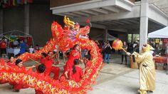 Lion and Dragon Dance at the 28th Annual Chinese New Year Festival! It's the #yearofthemonkey #mackid #mackidmiamieast #mackidnwmiami #chinesenewyearfestivalmiami