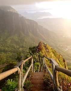 paradise hike. Again, don't know where this is but want to go there!