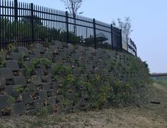 Living retaining wall, with newly planted natives, 2012!