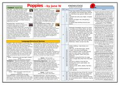 Power and Conflict Poetry Knowledge Organisers Huge Bundle! by TandLGuru Storm On The Island, Checking Out Me History, English Literature Poems, Gcse Poems, English Gcse Revision, Poem Analysis, Poetry Anthology, Aqa, Organisers