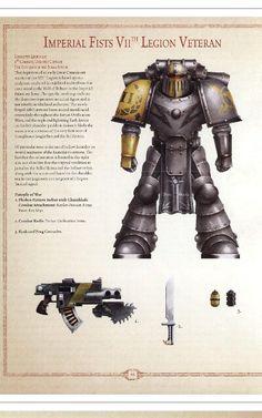Imperial fist legion