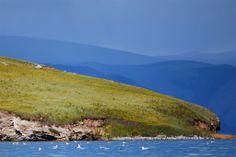 Wyspa Olchon / Olkhon Island