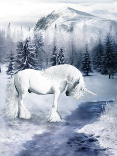 Numbers 23:22 KJV God brought them out of Egypt; he has as it were the strength of an Unicorn.