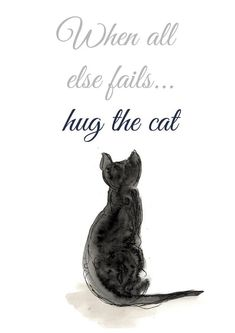 You notice that we collect always funny, hilarious and humor picture who's make you laugh. Like every time, Today we collect some Funny Quotes Cats.Read This 25 Funny Quotes Cats 25 Funny Quo… Crazy Cat Lady, Crazy Cats, I Love Cats, Cool Cats, Cat Quotes, Funny Quotes, Cat Lover Gifts, Cat Lovers, Funny Cats