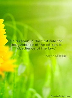 In a republic the first rule for the guidance of the citizen is obedience of the law. — Calvin Coolidge — QuoteDrip.com