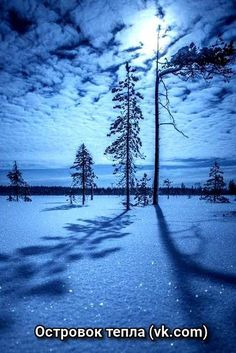 Most Magical Landscape and Nature Photos Winter Photography, Nature Photography, Moonlight Photography, Happy Photography, Photography Lighting, Photography Photos, Landscape Photography, Winter Magic, Winter Scenery