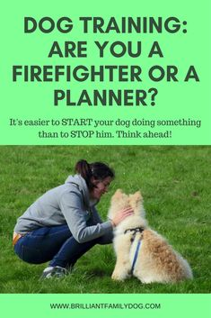 Trying to change your dog's action AFTER the event is frustrating and fruitless! Teach him first. #MasterDogTrainingandSocializing