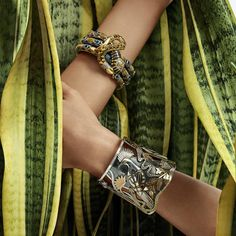 Azza Fahmy's ode to nature