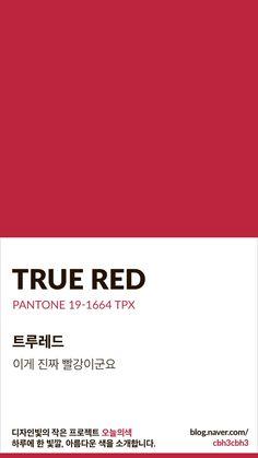 0번째 이미지 Pantone Red, Pantone Colour Palettes, Pantone Color, Red Color Background, Text Background, Hex Color Palette, Color Patterns, Color Schemes, True Red