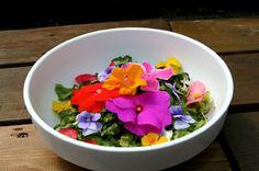 flower bibimbap