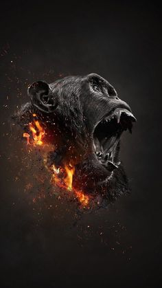This awesome digital art collection is collected from the artists all over the world. They made it with different techniques, modes and perspective. Gorilla Tattoo, Gorilla Gorilla, Monkey Art, Cartoon Monkey, Creation Art, Foto Art, King Kong, Creative Photos, Photo Manipulation