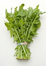 Beneficial and Harmful Herbs Used for Losing Weight
