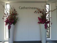 Catherineau