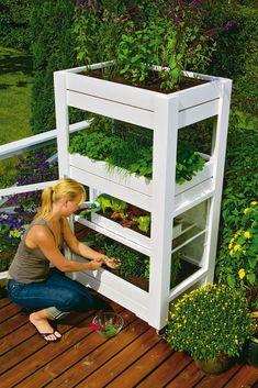 Balkon Gemüsegarten Kräuter Pflanzkasten Platzsparende Ideen ... Krauter Balkon Pflanzen