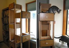 Need a craft project  want to spoil your kitty? Build Your Own Custom Cat Tree Using Re-purposed Dresser Drawers
