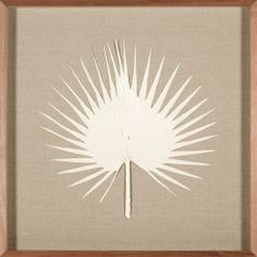 Palm Frond, Ivory | Natural Curiosities $545