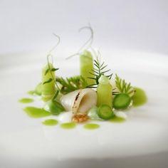 Scallop/Pea/Mustard seed/Cucumber #plating #presentation