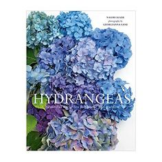 Penguin Books, Tapas, Hydrangea Varieties, Natural Bouquet, Popular Flowers, Outdoor Flowers, Blooming Plants, French Country Cottage, Stunning Photography
