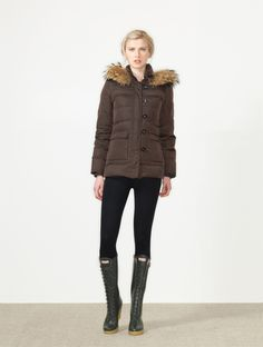 Collection of Hunter Inaugural Outfit in brown color Coat