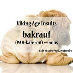 ~Viking Age insults~