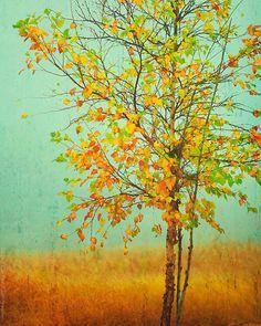 fall+art.jpg 570×713 pixels