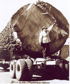 Logging Equipment Pictures - Page 8