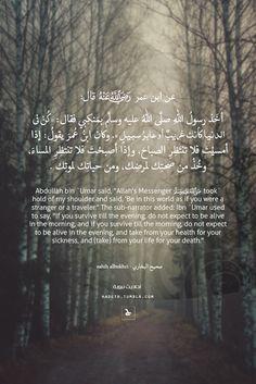 """عن ابن عمر - رضي الله عنه - قال: أخَذ رسولُ اللهِ صلَّى اللهُ عليه وسلَّم بمَنكِبي فقال : """"كُنْ في الدنيا كأنك غريبٌ أو عابرُ سبيلٍ """" . وكان ابنُ عُمرَ يقولُ : إذا أمسيْتَ فلا تنتَظِرِ الصباحَ، وإذا أصبحْتَ فلا تنتظِرِ المساءَ، وخُذْ من صحتِك لمرضِك،..."""