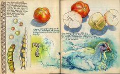 by Sketchbuch #art #journal #sketchbook