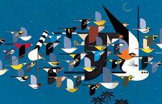 Charley Harper #charleyharper #grafica #illustrazione #storia #animali #uccelli