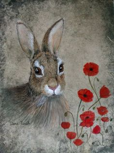 Bunny and Poppies 8x10 inch Giclee by leicalady on Etsy