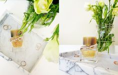 My Burberry Fragrance Beauty Review, Burberry, Glass Vase, Fragrance, My Favorite Things, Floral, Decor, Dekoration, Decoration