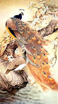 Hermosas pinturas de Pavos Reales.
