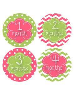 Baby Girl Month Sticker Baby Month Sticker by MoonLitPrintables