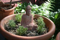 Meditation garden - lavender and Buddha  secret notebooks • wild pages