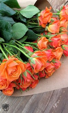 The Meanings of Orange Roses– Are you aware of the fact that aside from red, white and yellow roses, you could also have orange roses? Well, with huge numbers of suggestions of citrus, glowing sunsets and fire, orange roses make it the best summertime blooms in the market today. Vibrant and unique, this tangerine blossom delivers one way of bringing invigorating energy to joyful occasion. It's the perfect combination of classic and contemporary effect that comes from red and yellow roses…