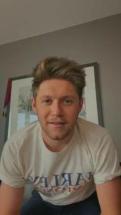 Niall Horan News, Niall Horan Baby, Naill Horan, Irish Boys, Irish Men, One Direction Pictures, I Love One Direction, Best Song Ever, Best Songs