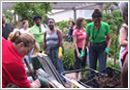 """Garfield Park Conservatory in Chicago, IL offers workshops such as """"Composting in the City"""""""
