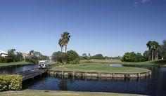 Pelican Pointe Golf & Country Club - Pelican Pointe Golf Course, Venice: Pelican Pointe Golf Course, Venice