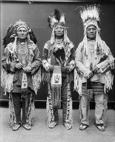 Wolf Plume, Curly Bear, Bird Rattler - Blackfoot 1916