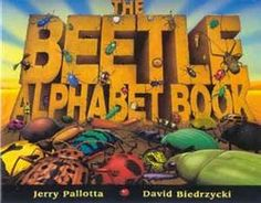Help first graders learn about the natural world around them. This book list will not only spark their curiosity about creatures as varied as beetles, sea turtles, and polar bears, but also offer important lessons about becoming an involved citizen.
