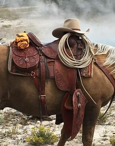 An amazing moment in time---Keith Seidel of Seidel's Saddlery is riding his own saddle and horse in Yellowstone National Park! Background is a steaming geyser along one of the trails! Cowboy Gear, Cowboy Horse, Cowboy And Cowgirl, Horse Tack, Pretty Horses, Horse Love, Beautiful Horses, Wade Saddles, Horse Saddles