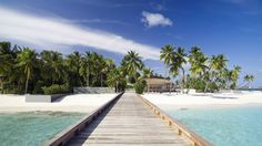 Park Hyatt Maldives Hadahaa – barefoot luxury resort in Maldives experience, a perfect private island holiday with soft sandy beaches. Detail Architecture, Maldives Resort, Sustainable Tourism, Luxury Holidays, Hotels And Resorts, Luxury Hotels, Places To See, Travel Inspiration, Eco Friendly