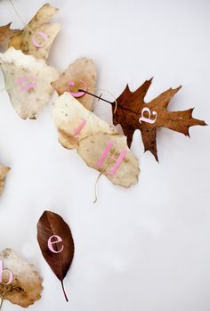 Alphabet stickers and leaves...♡
